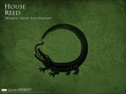 house_reed_wallpaper_by_siriuscrane-d5mcsbb