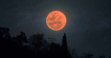 blood moon main hbo 375x195 - هرآنچه درباره سریال ماه خونین Blood Moon، نخستین اسپین آف بازی تاج و تخت می دانیم