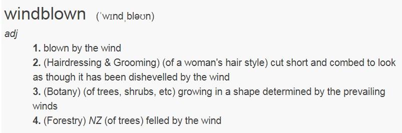 windblown - بادهای جنجالی؛ واقعاً بادبرده ها به چه معناست؟