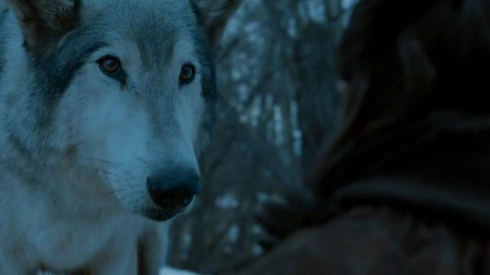 Nymeria Stormborn 711x400 - سوالاتی که بازی تاج و تخت بی جواب گذاشت